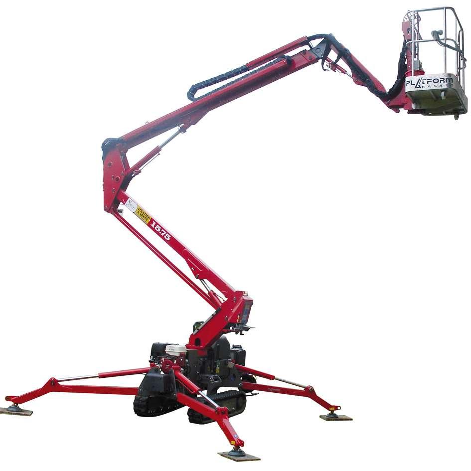 Spider-1575